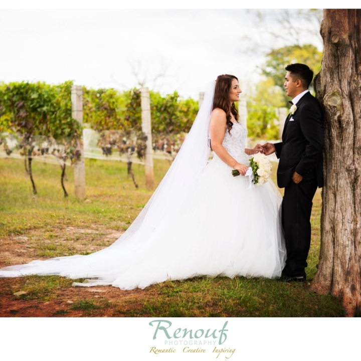Marlene & Tito . Married . Morais Vineyards Wedding